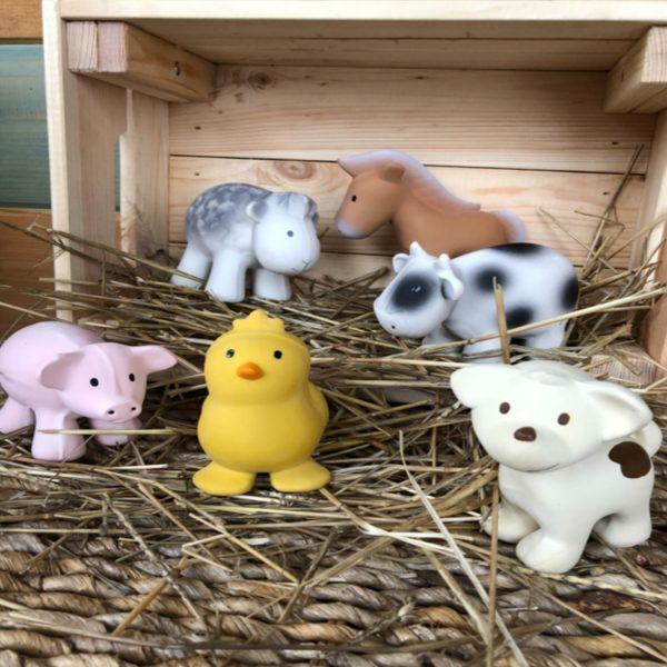 Tikiri | Farm Animals